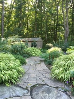 The entrance into the woodland featured shade-loving plant selections