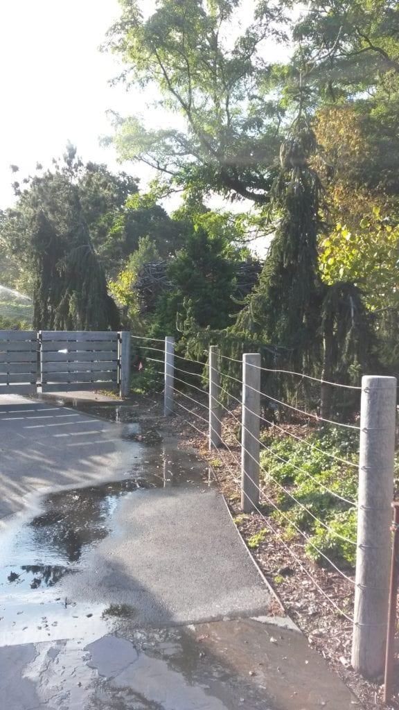 Permanent tall fencing at Brooklyn Botanic Garden serves as an actual barrier.