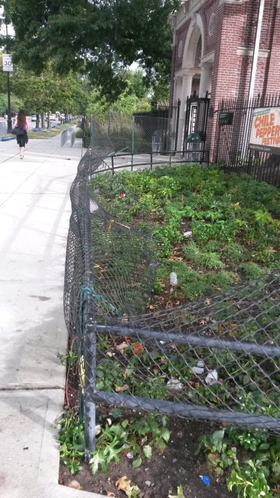Plastic temporary fencing added to permanent fence outside Brooklyn Botanic Garden prevents public festival revelers from entering plant bed. This strategy was only moderately successful; fence posts were bent and actively destroyed with disregard for plant bed; however, clearly plants were protected to some degree.