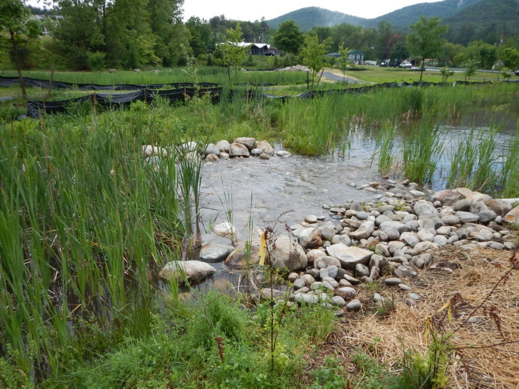 Lessons learned from a stormwater wetland treatment system for Design of stormwater ponds