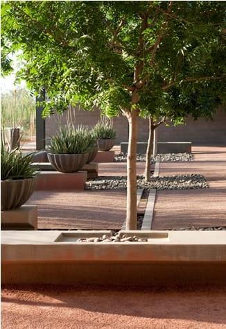 Artful rainwater design a case study ecological for Study landscape design