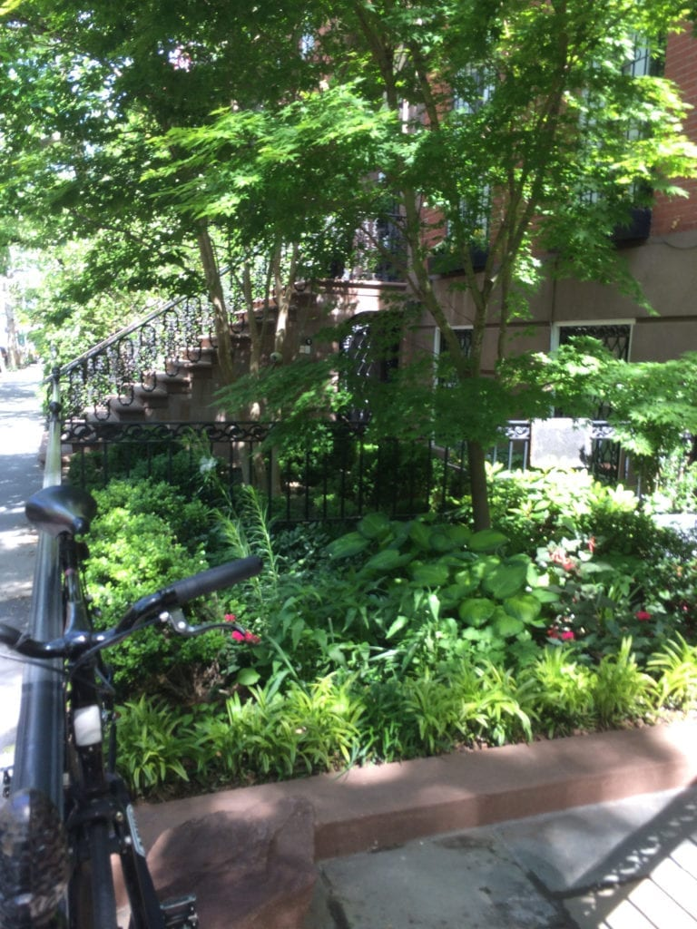 We Re In A Tight Spot Landscape Design For Small Urban