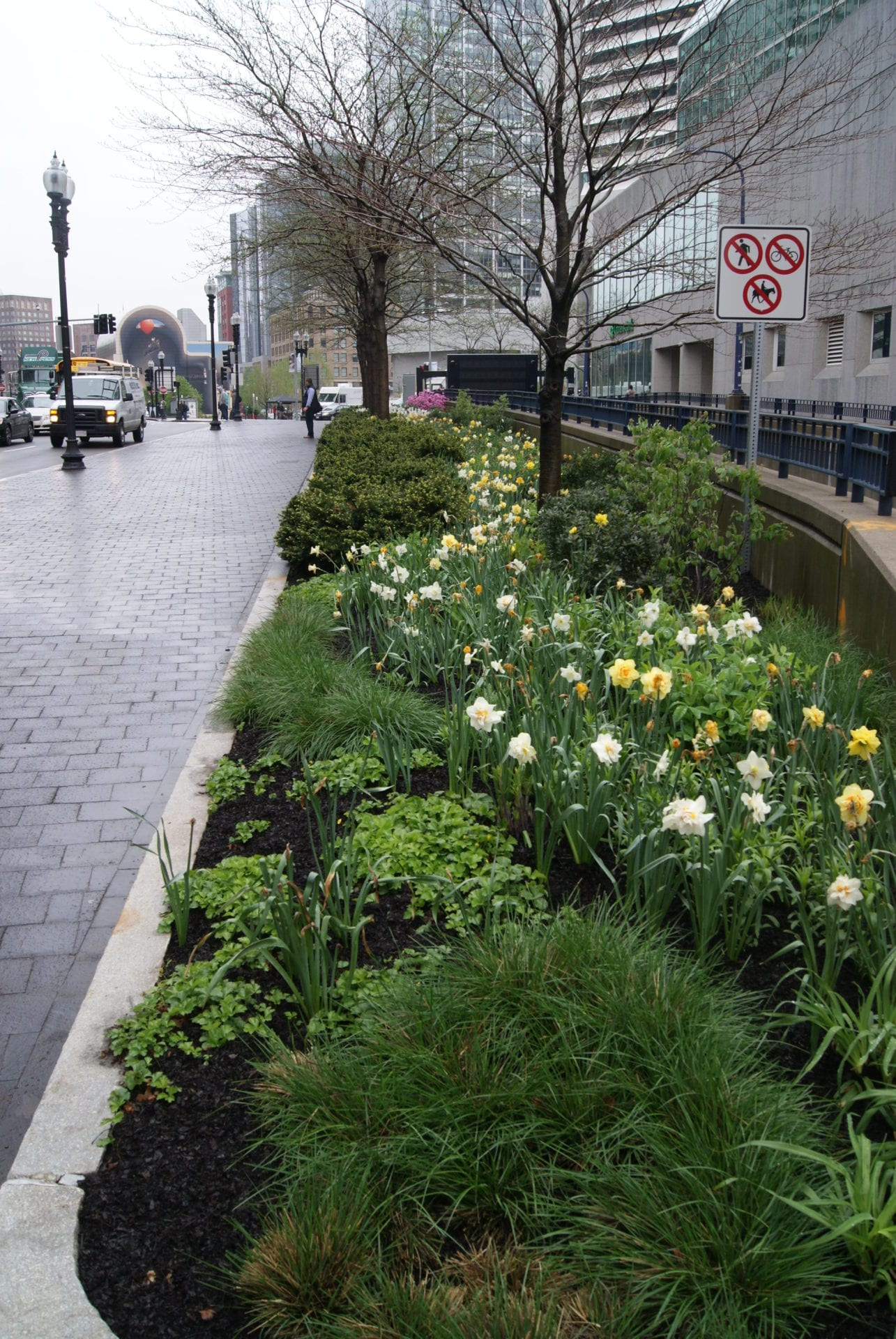 Innovative Pollinator Ribbon Planting Along The Greenway