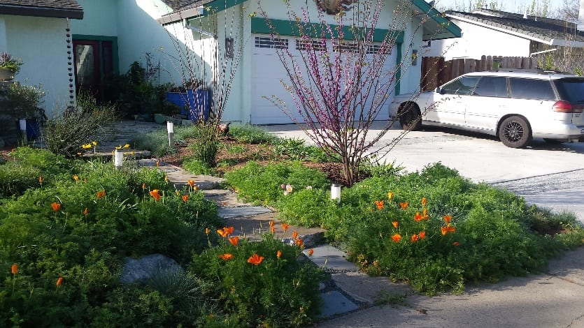Water Wise & Whimsy - Ecological Landscape Alliance