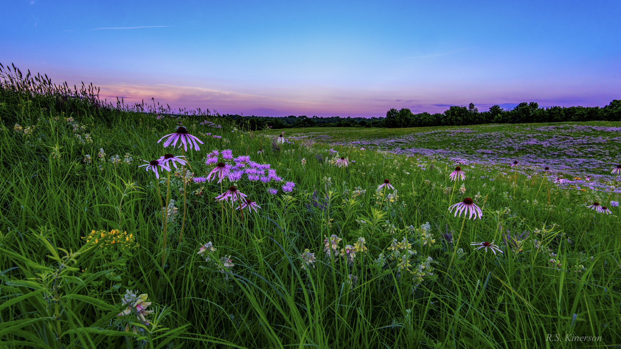 Webinar Missouri And The New Tallgrass Prairie Economy Ecological Landscape Alliance
