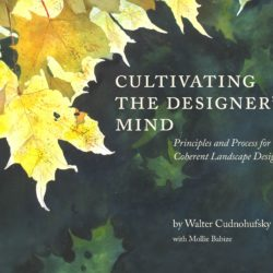 Book Cover - Designer's Mind
