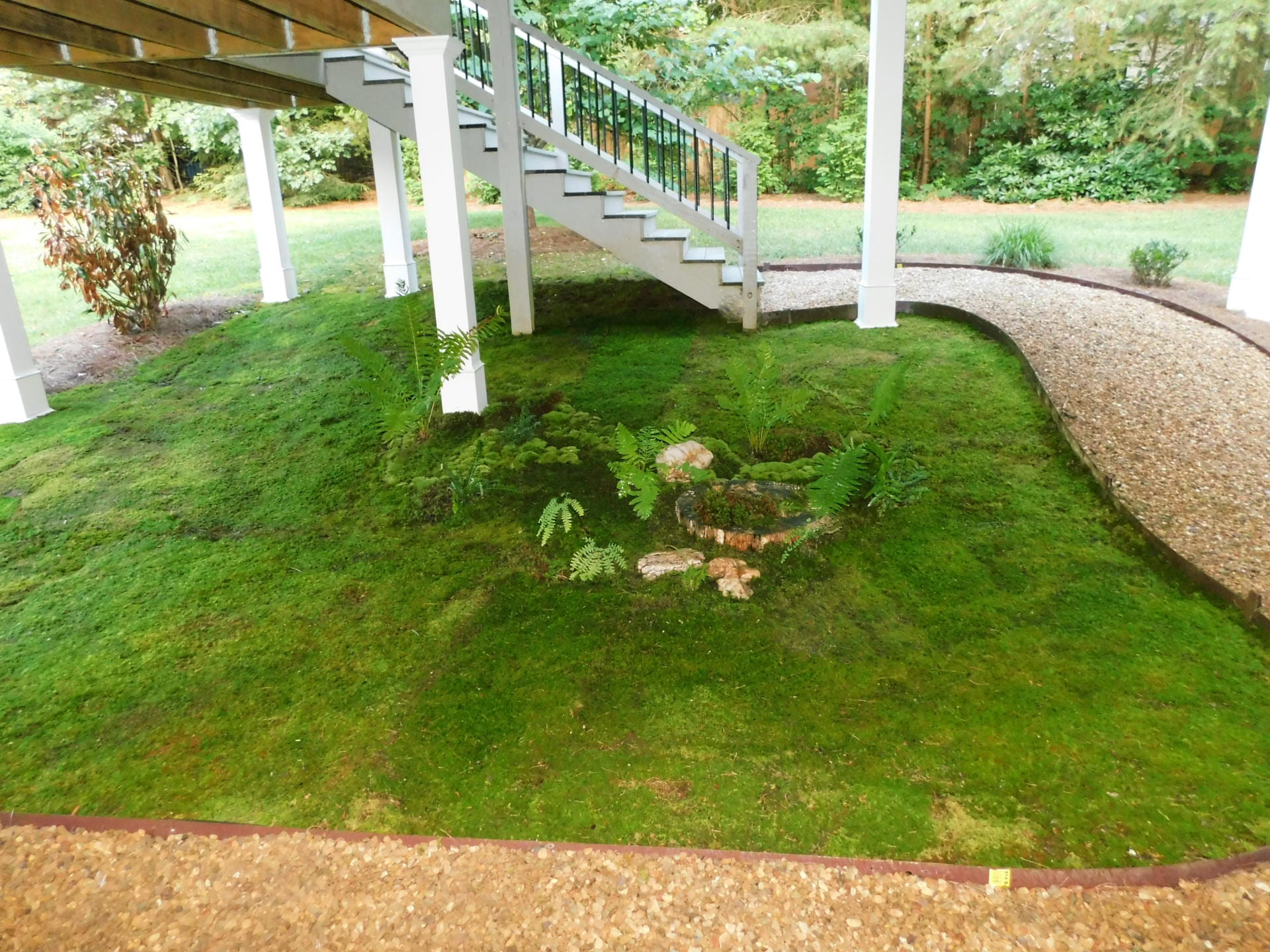 Moss Providing Year Round Green Solutions For Erosion Control
