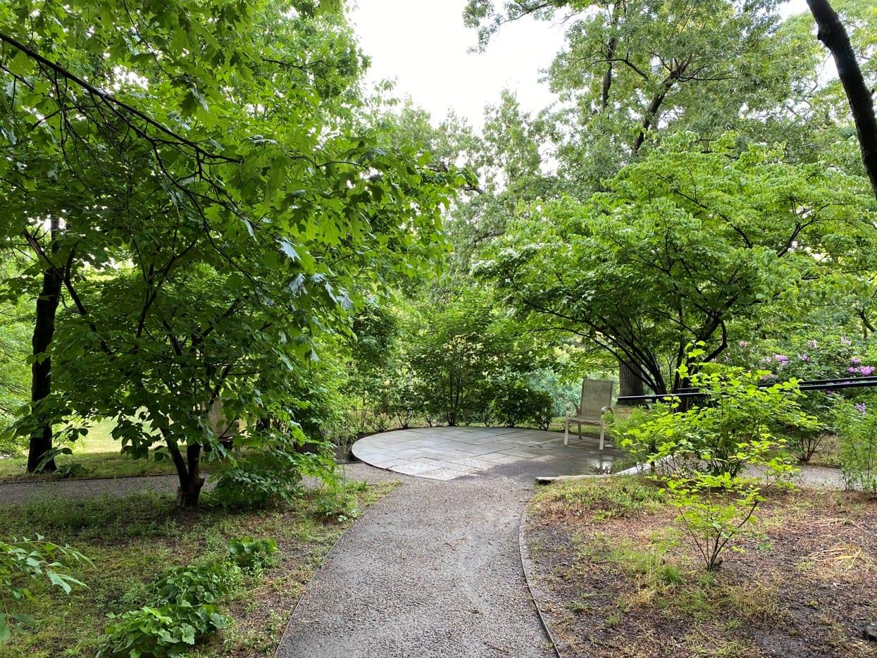 Celebrating Natives Garden Tour – Newton, MA