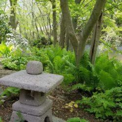 13.Pet.memorial.garden.overlooking.marsh