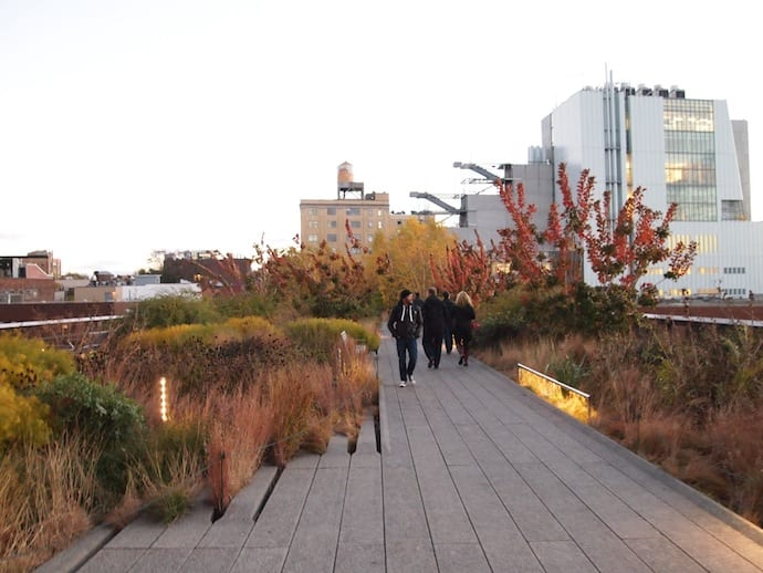 """Urban Wilderness and the """"High Line Problem"""""""