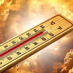 thermometer-4767445_1920